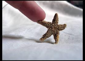 You're a Star by PreciousNothin