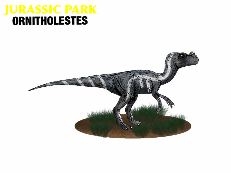 http://fc02.deviantart.net/fs71/i/2011/330/7/8/jurassic_park___ornitholestes_by_mr_saxon-d4he7df.png