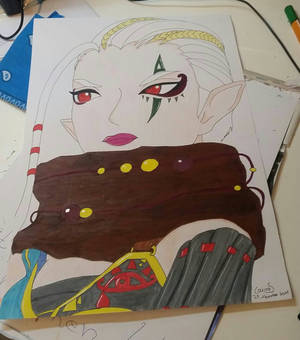 Impa from warriors of hyrule