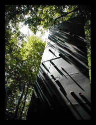 Climbing Amongst Trees