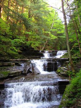 Buttermilk Falls 15
