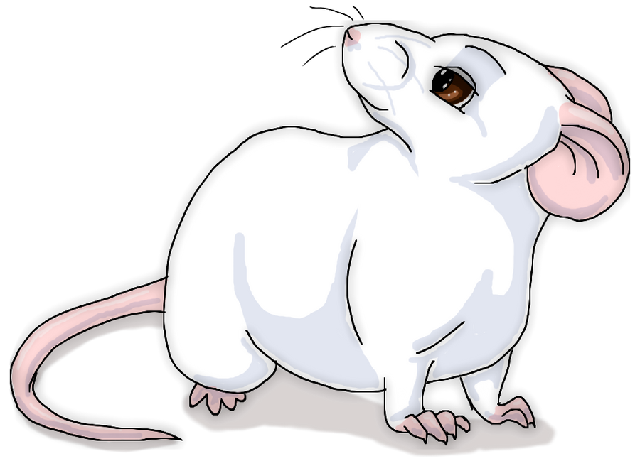Tubby Mouse by Starrypoke