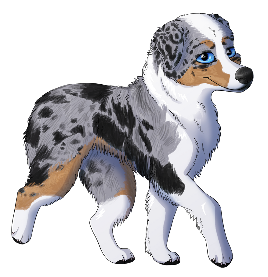 Image Result For Oc Paws Dog