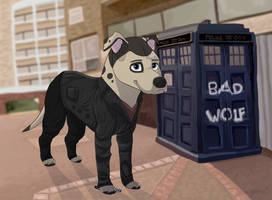 Ninth Dogtor Woof for Chelsea-the-tomboy