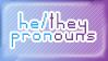 PN: I Prefer He/They Pronouns V.1
