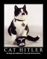 Cat Hitler