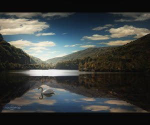 .: Alone In The Lake :. by oguzceng