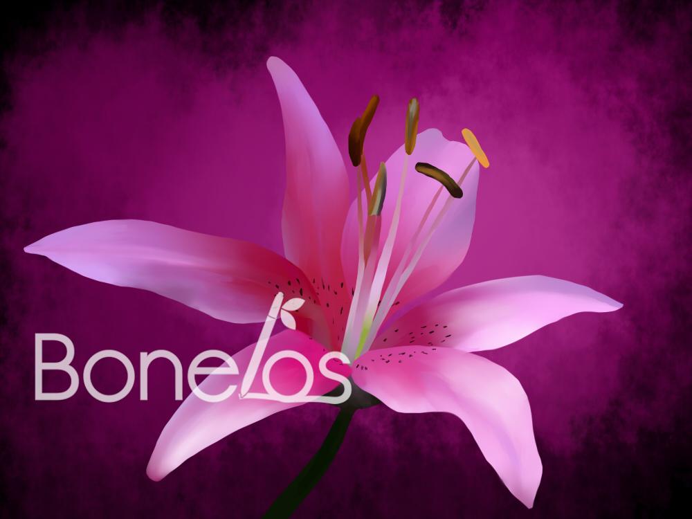 Flower redraw by Bonelos