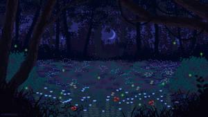 [C] Night forest