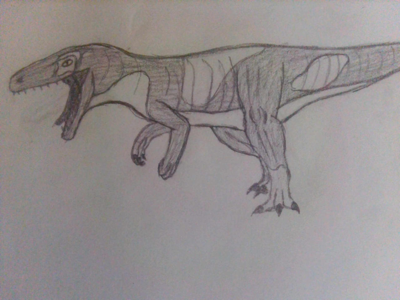 Eustreptospondylus oxoniensis aka Spot