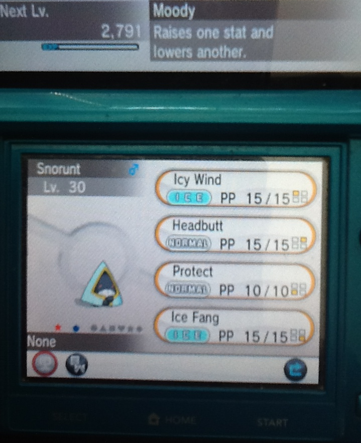 You Voted! My New Shiny Snorunt! by Snivy101