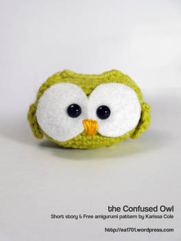 the Confused Owl - pattern and story