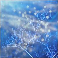Winter Wedding by DemonMathiel