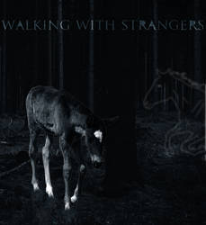 Walking With Strangers by Another-Universe