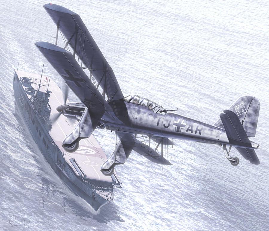 Eine Illusion des Seeadlers by hylajaponica