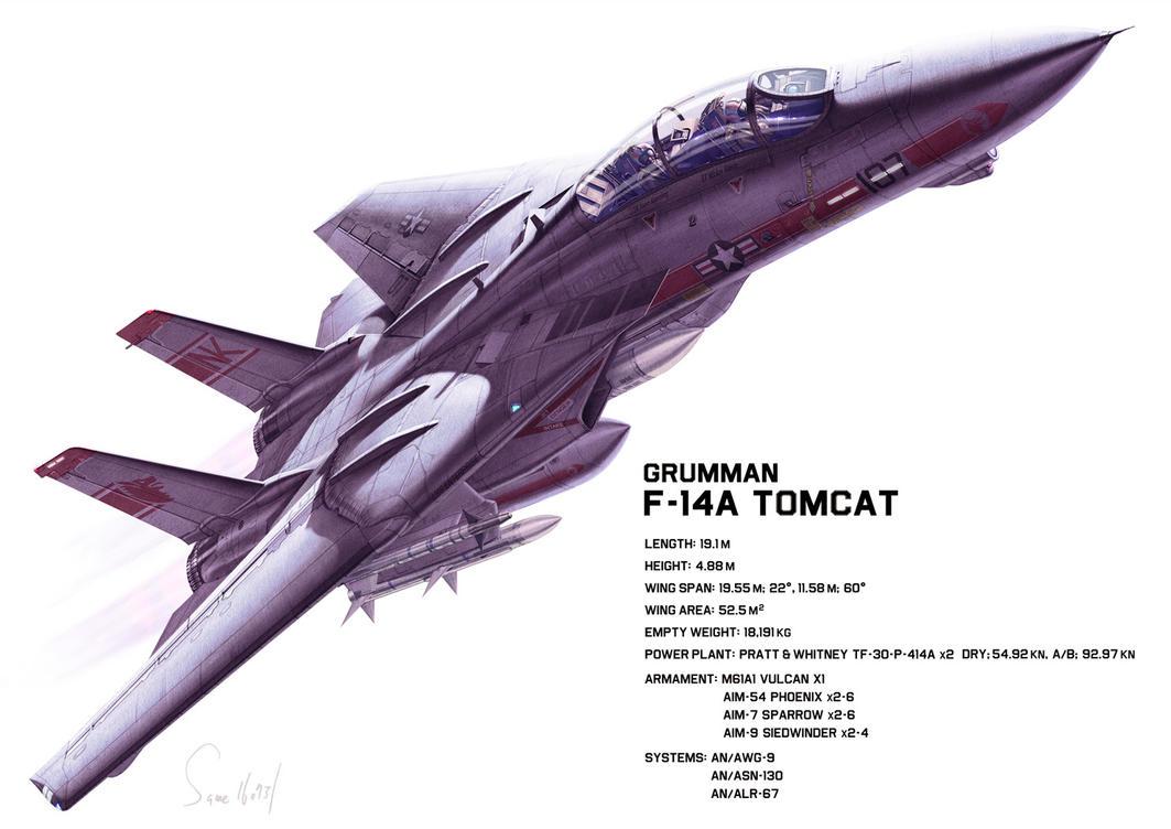 Grumman F-14A by hylajaponica