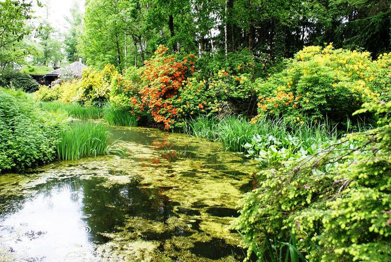 Switzerland in spring 3 by Cadaska