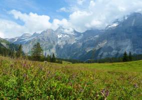 Alpine Meadow by Cadaska