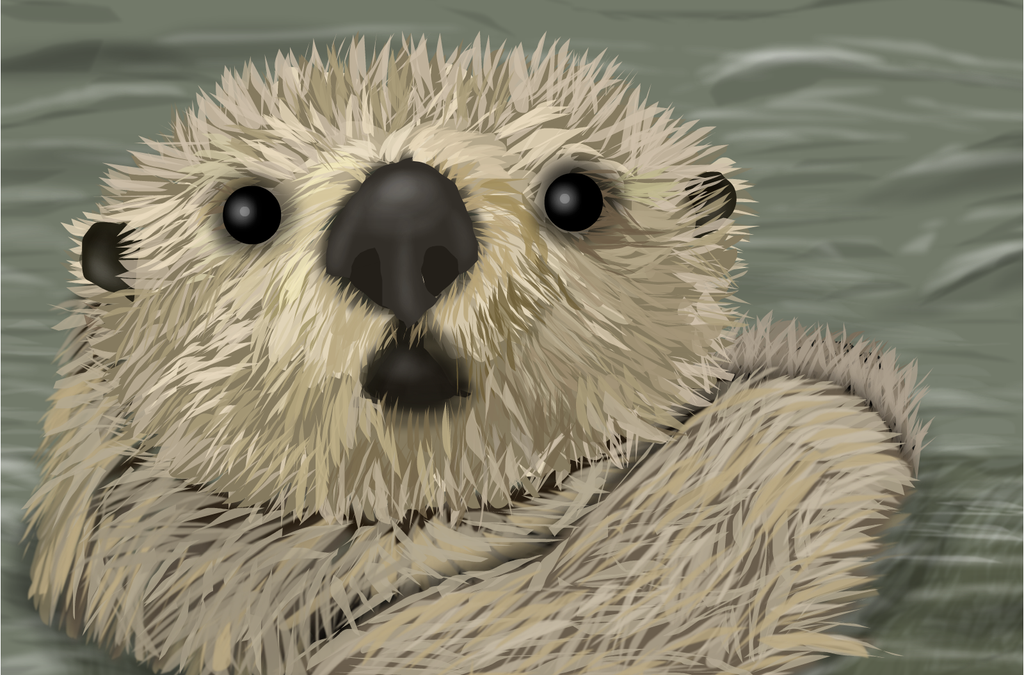 Otter by shellfish101