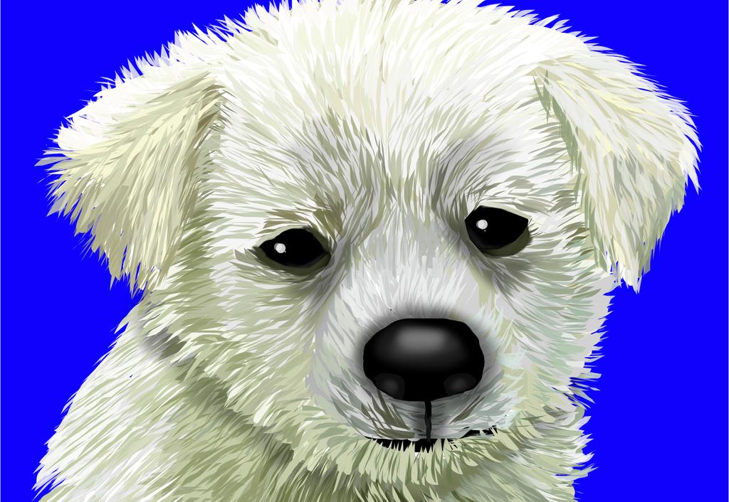 Puppy by shellfish101