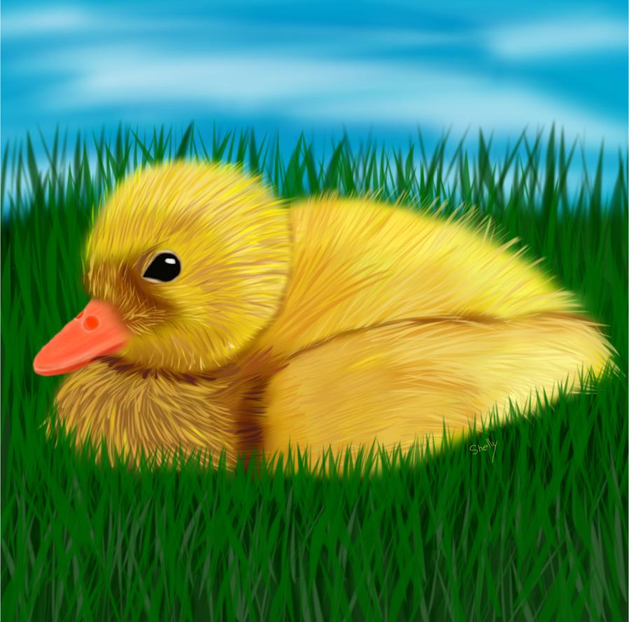 Ducky by shellfish101