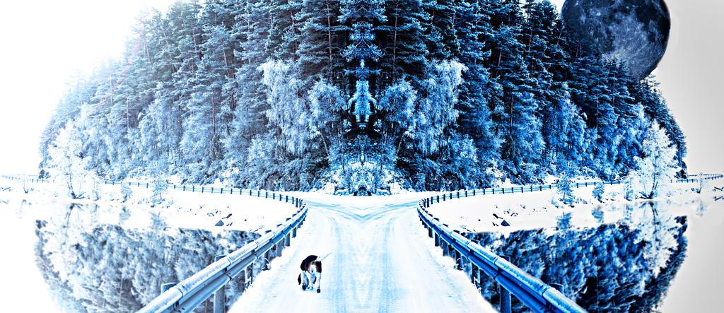 Winter's passage by Catosan