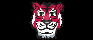 Tiger Vision - Logo