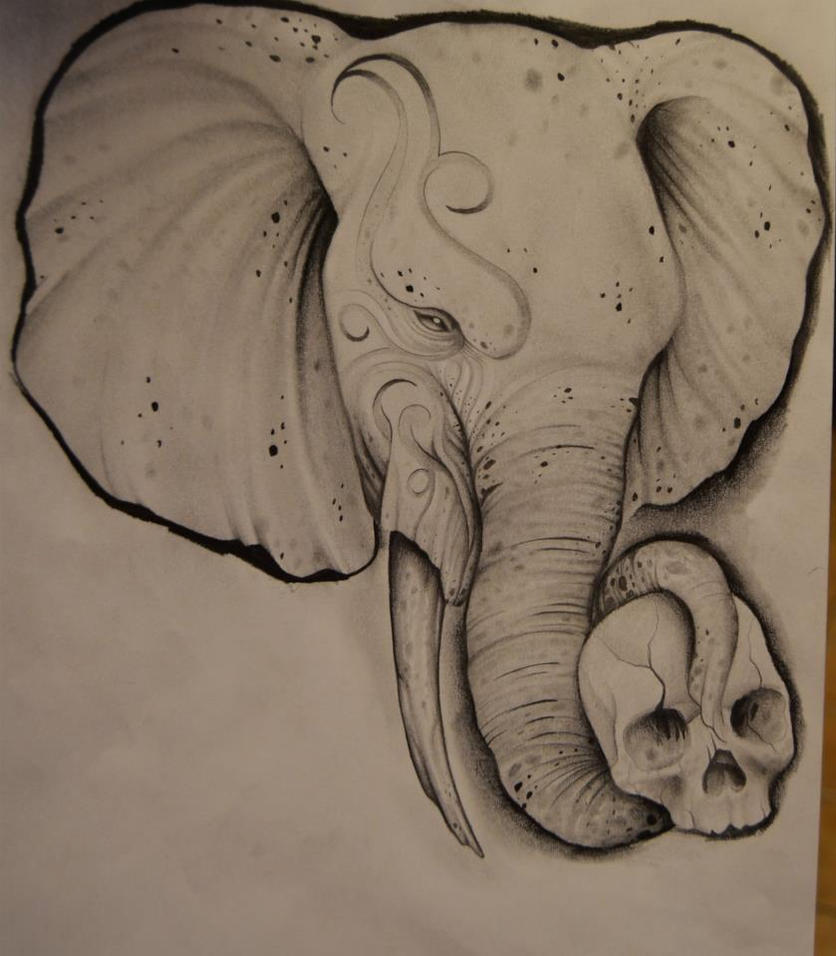 Elephant Drawing Tattoo Elephant Drawing by