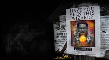 harry potter feat. me by devlin008