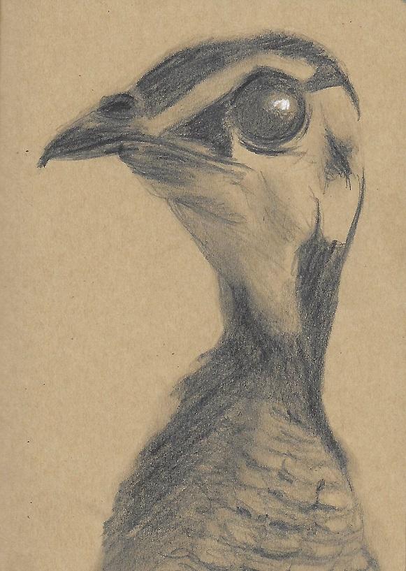 Sketchbook: kuiken by El-RoLo