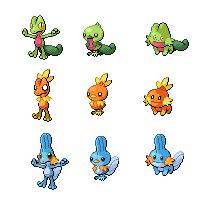 Gen3 Pokemon Starters by threepersonsecret