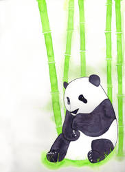 Yet Another Panda