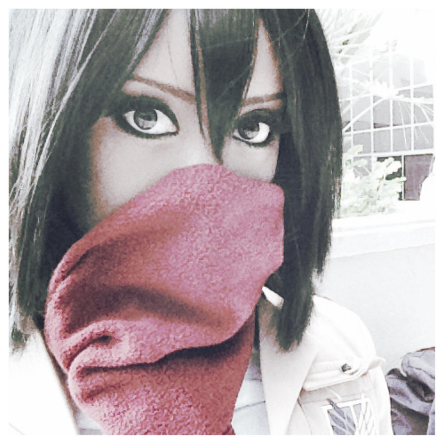 Attack on Titan: beloved scarf by tsukiumi