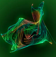 Whirling Parrot