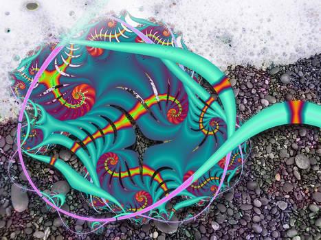 Sea-tangle