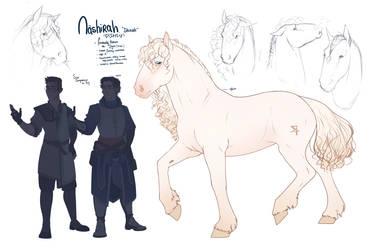 DnD Npc| Roy's horse| Nashirah by RomyvdHel-Art