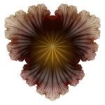 Vein Flower