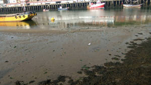 Whitby Harbour (7)