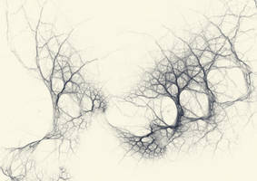 Spidery Trees by PaulineMoss