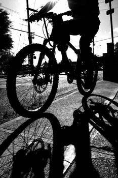 Wilder Biker