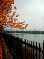 Autumn in New York City by AnnaGiladi