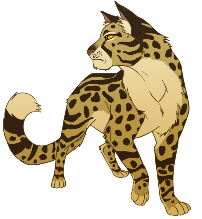 Tan And White Female Warrior Cats