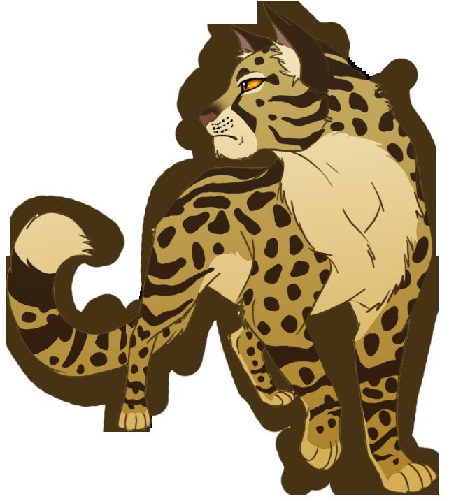 Leopardstar by AnnaGiladi
