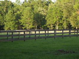 Pasture by zippostock