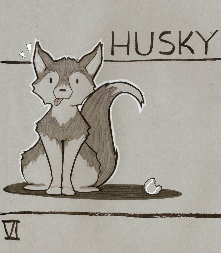 6. Husky