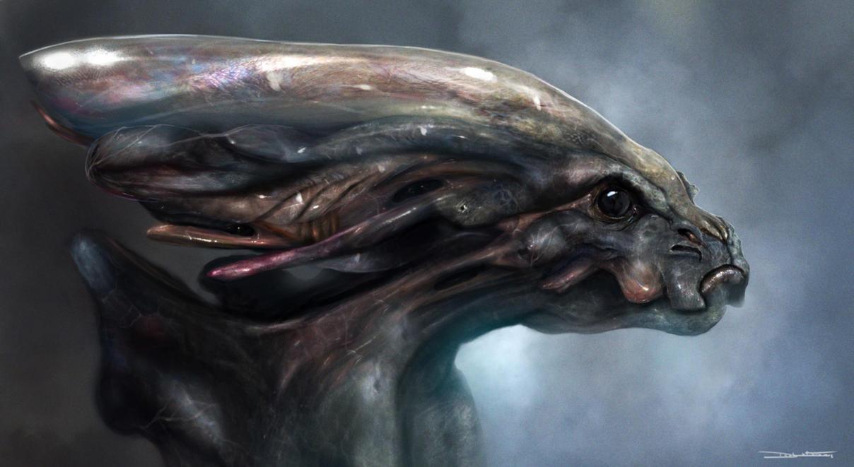 http://th01.deviantart.net/fs51/PRE/f/2009/332/8/9/Greys_Alien_Bust___by_adonihs.jpg