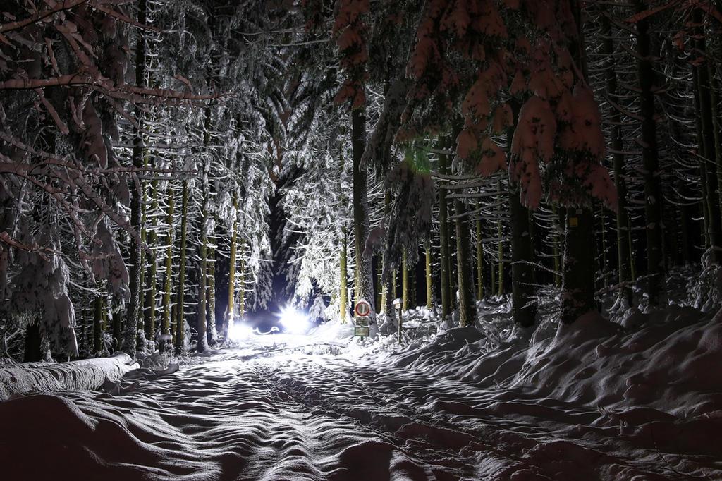 BlackForest-Winter by VooDooMania