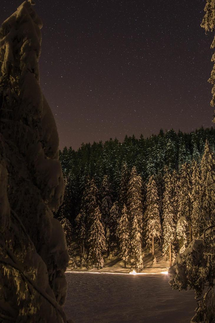 Winter by VooDooMania