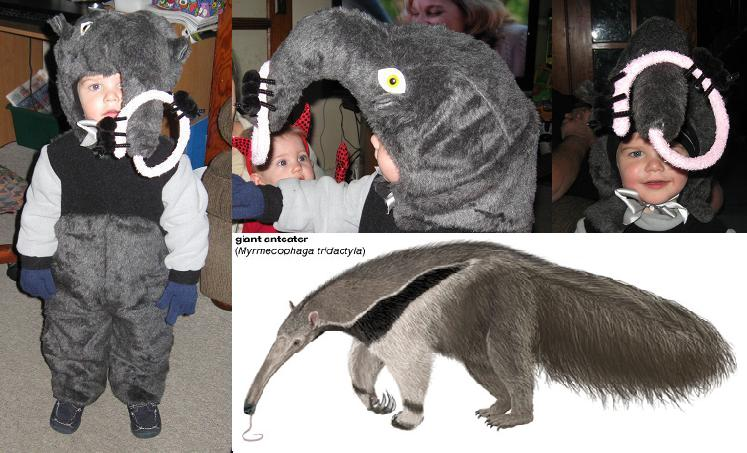 Giant Anteater Costume by HappyCreations ...  sc 1 st  DeviantArt & Giant Anteater Costume by HappyCreations on DeviantArt