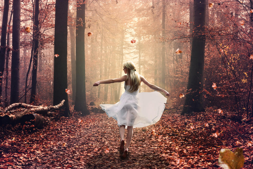 Autumn by Ovidiu96
